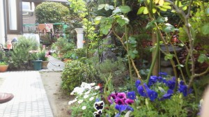 庭を見ながらコーヒーをいただき くつろぎのひと時