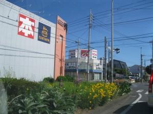 街路空間地の緑 個人の費用で維持されている。