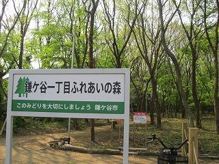 市が整備するふれあいの森