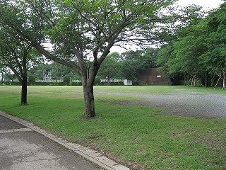 運動公園内にはスペースがたくさん