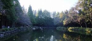 急に冷え込んだ10/7早朝の貝殻山公園 6時過ぎには多くの利用者あり