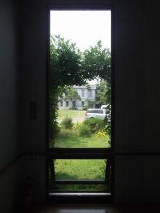 更衣室から見える庭の風景。光を上手く使っている。冷房無しでも涼しい。