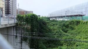 現新京成ホームの端あたりを南北通路が横切る