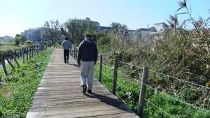 大津川沿いの木道を歩く