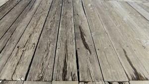 木道の腐食状況が気にかかる